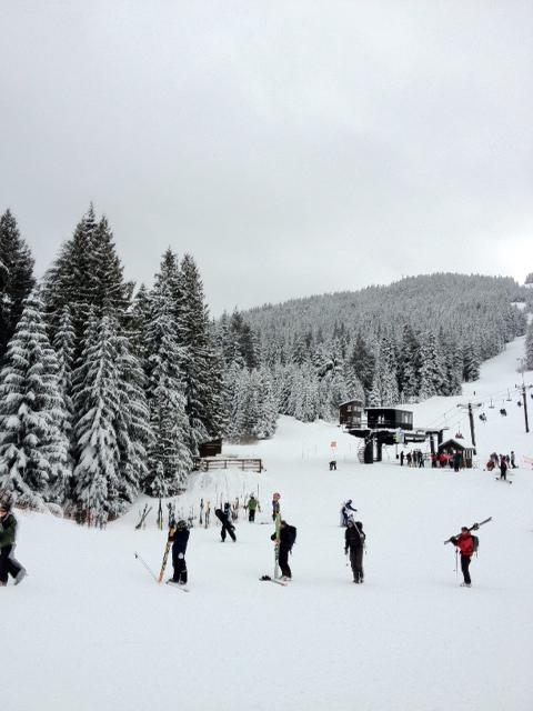 Ski Bowl 2
