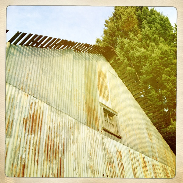 Blue Barn 5