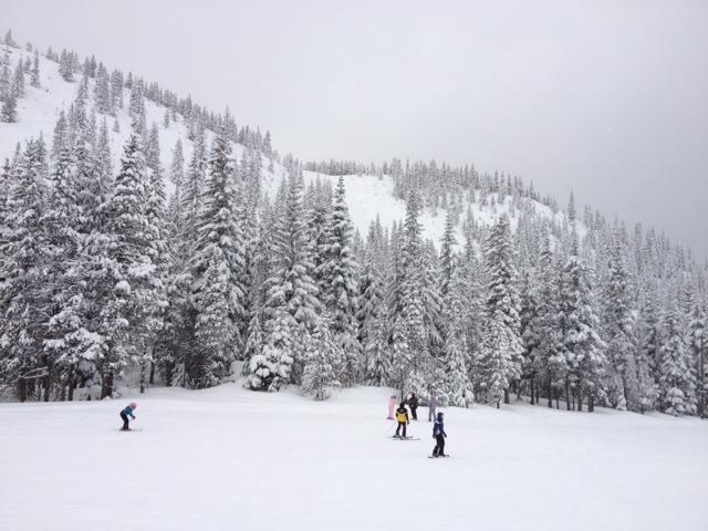 Ski Bowl 3