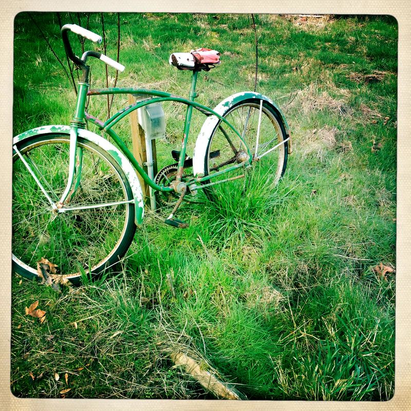 Old Bike 3 Hipsta