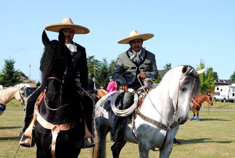 Vaqueros 1