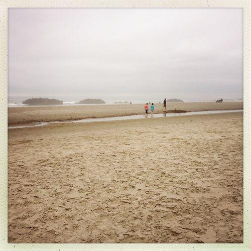 Beachcombers 1