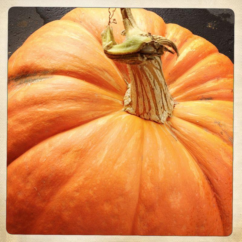 2 Pumpkins 2012