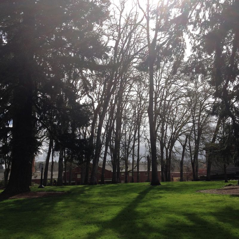 SO 5 Forest Grove Campus