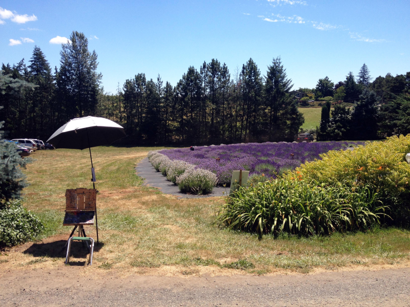 SO PleinAir Set Up Lavender 5