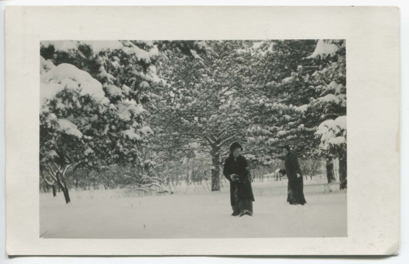 Antique Pic SNOWBALL FIGHT