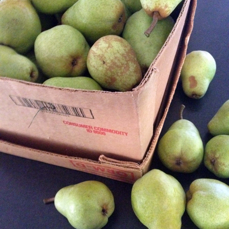 SO Pears 2